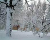 thanks-winter.jpg